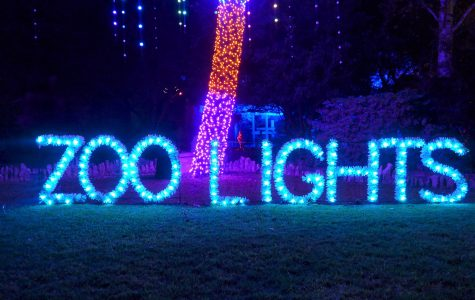 San Antonio Zoo gets lit