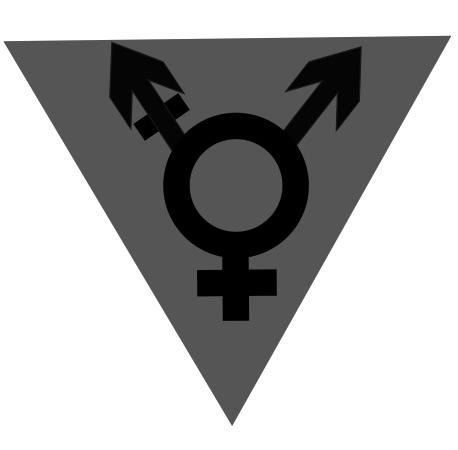 Transcending transphobia