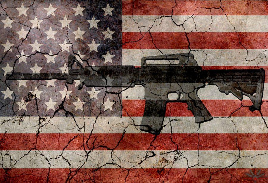 gun+debate
