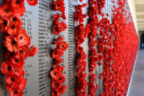 The Great War: wear your poppies – lest we forget