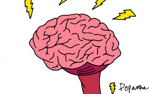 UTSA expands on dopamine research