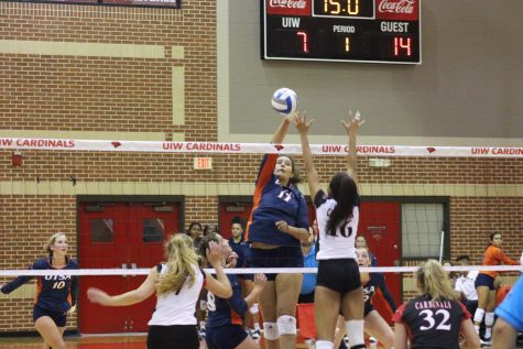 Volleyball soars past Cardinals