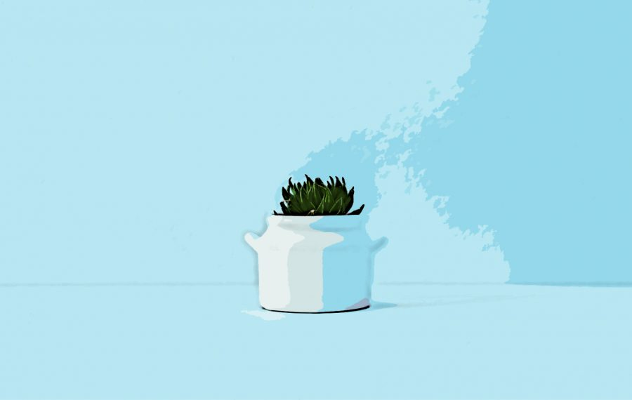 Graphic+of+a+succulent+in+a+vase.