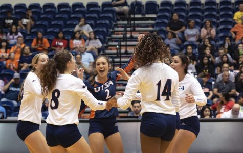 Volleyball splits weekend to Rice, UTEP
