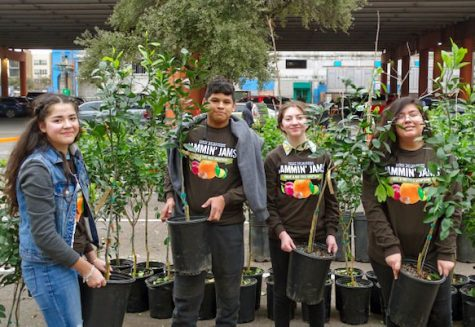 Plant-lovers enjoy the tree adoption with friends and loved ones. The event took place on Jan. 25, 2020.