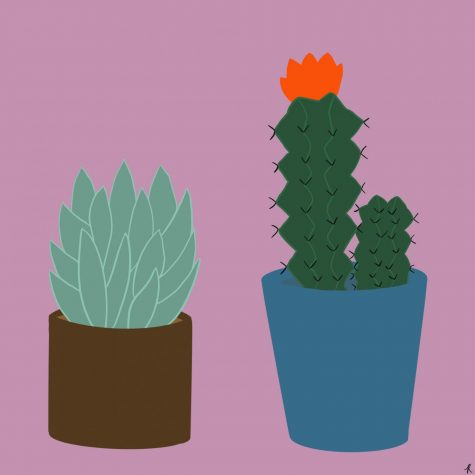 Illustration by Robyn Castro