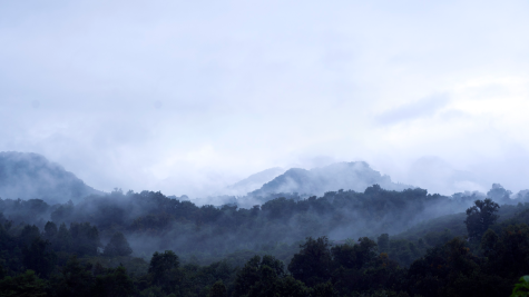 The everyday guardians of The Cloud Forest