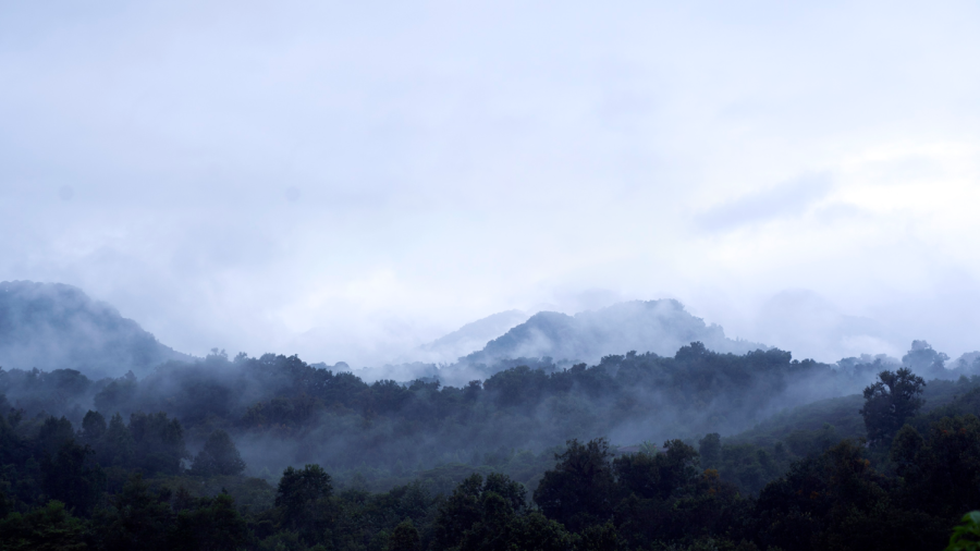 The+everyday+guardians+of+The+Cloud+Forest