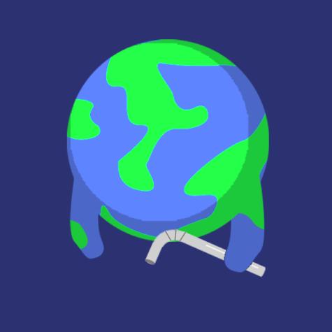 Metal straws wont save the world