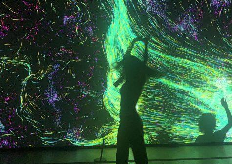 """Kuflux. """"Quantum Space."""" Photo by Alanna Pitre."""